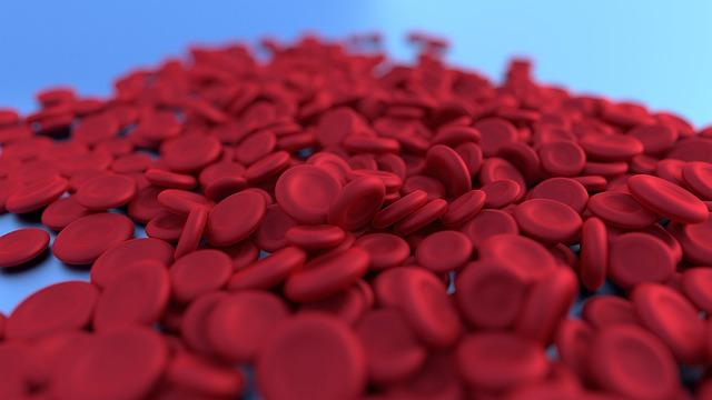 철분 빈혈