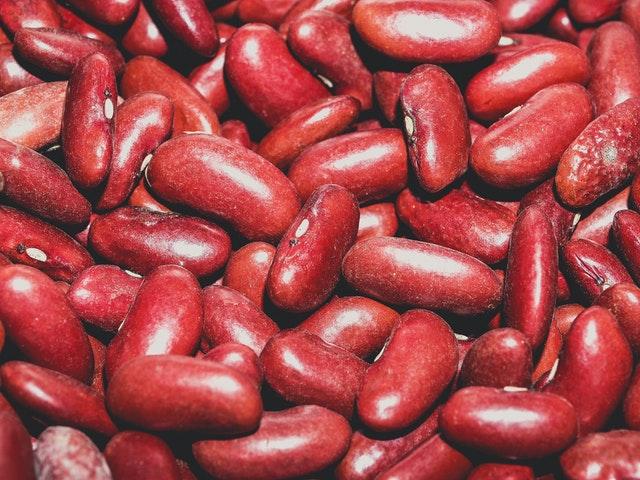 갱년기 음식 콩