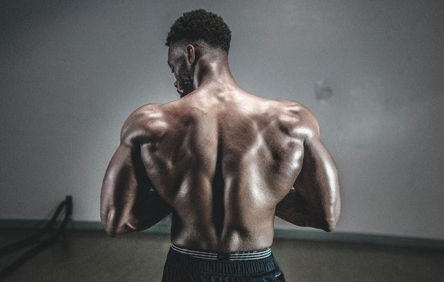 근육량 늘리는 방법