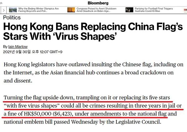 홍콩 중국 바이러스 국기 1